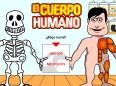 Huesos y Músculos del Cuerpo Humano