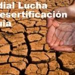 Juegos para el Día Mundial de Lucha contra la Desertificación y la Sequía