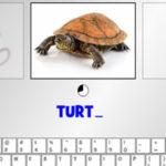 Escribir en el Teclado: Animales en Inglés