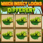 Buscar el Insecto Diferente