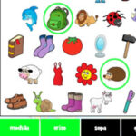Buscar Objetos en Español