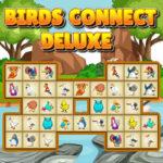 Conectar Pájaros