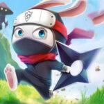 Ninja Rabbit: el conejo ninja