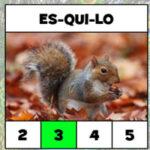 Contar el Número de Sílabas en Portugués