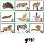 Letras Desordenadas: Animales en Francés
