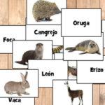 Nombres de Animales en Español