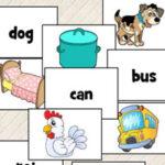 Palabras CVC en Inglés (Consonante-Vocal-Consonante)