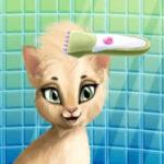 Peluquería de Gatos