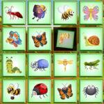 Percepción Visual: encontrar el insecto