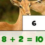 Puzzle de Sumas