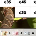 Puzzle con Billetes de Euros