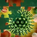 Puzzles del Coronavirus