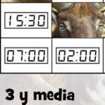 Puzzles de las Horas