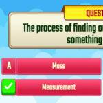 Quiz de Medidas (inglés)