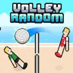 Ragdoll Volley Random