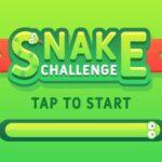 Reto Snake