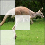 Rompecabezas 3×3 con Animales
