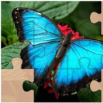 Puzzles Rompecabezas de Mariposas