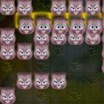 Tetris de Gatos