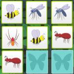 Unir Parejas de Insectos
