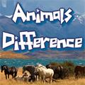Buscar diferencias en fotos reales de animales